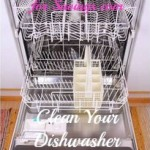 Clean Your Dishwasher Naturally