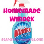 Homemade Windex Recipe!