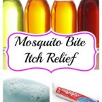 30 Mosquito Bite Itch Relief Tips